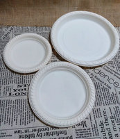 Disposable Cornstarch Plastic Plate Biodegradable Tableware