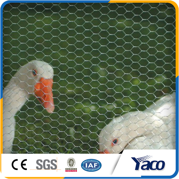 List Manufacturers of Chicken Wire Lowes, Buy Chicken Wire Lowes ...