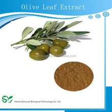 Natural organic olive leaf extract in bulk