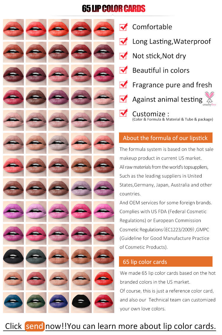2019 Wholesale  Cosmetics Lip Kit Liquid Matte Top Lady Lipstick