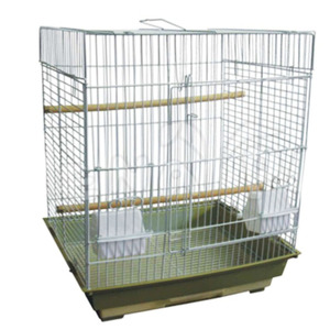 2016 new product comfortable small bird pet cage in china