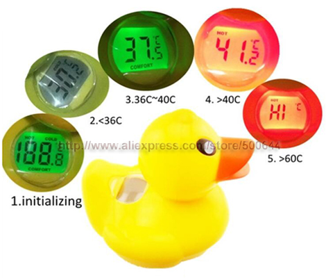 Compare Prices On Duck Pool Thermometer Online Shopping