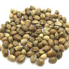 the best price hemp seeds with best quality