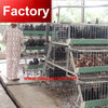 Alibaba Website large sacle poultry farm chicken cage with free layout design