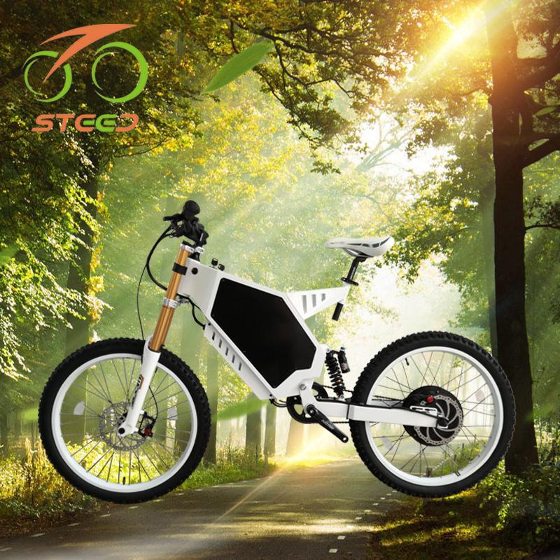 Lớn điều khiển điện 48 v điện bánh xe lớn xe đạp 150 kg tải nổi tiếng