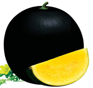 f1 hybrid Lemon yellow seedless watermelon seed