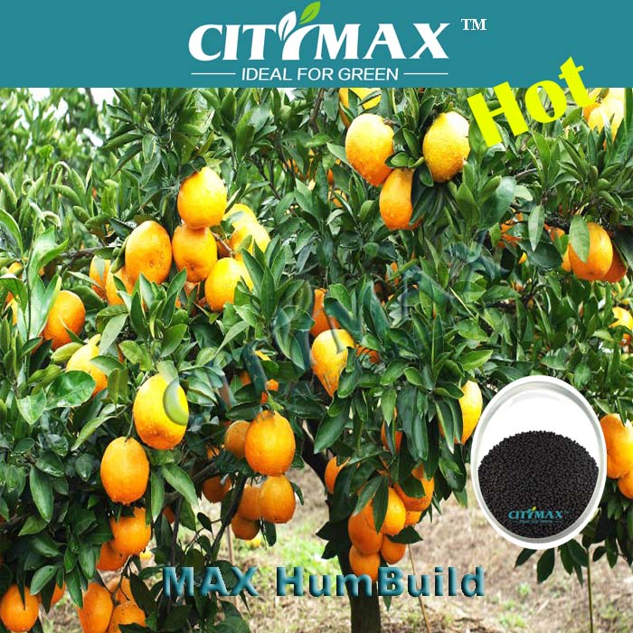 Humic Aicd Organic Fertilizer