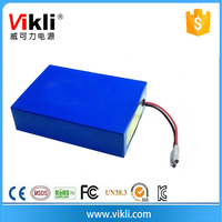 12V LiFePO4 Battery 12v 30Ah Lithium Polymer Battery LiFePO4
