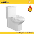 Ceramic Sanitary Ware Types Of Toilet Bowl S-Trap Integrative Molding