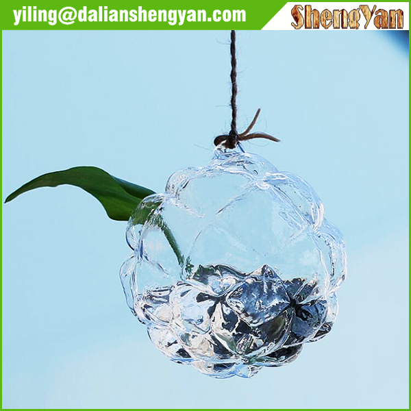 Clear Glass Wall Hanging Vase Bottle for Plant Flower