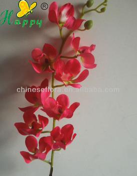 Gambar Bunga Anggrek Kertas Gambar Bunga