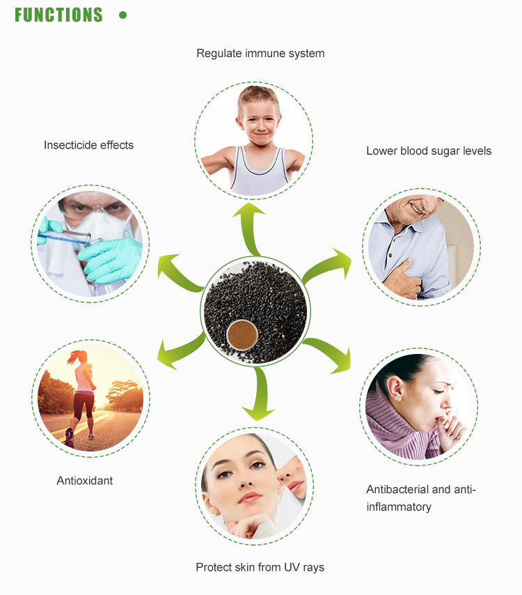 China Professional Healthy Brain Function Sesamin Black ...