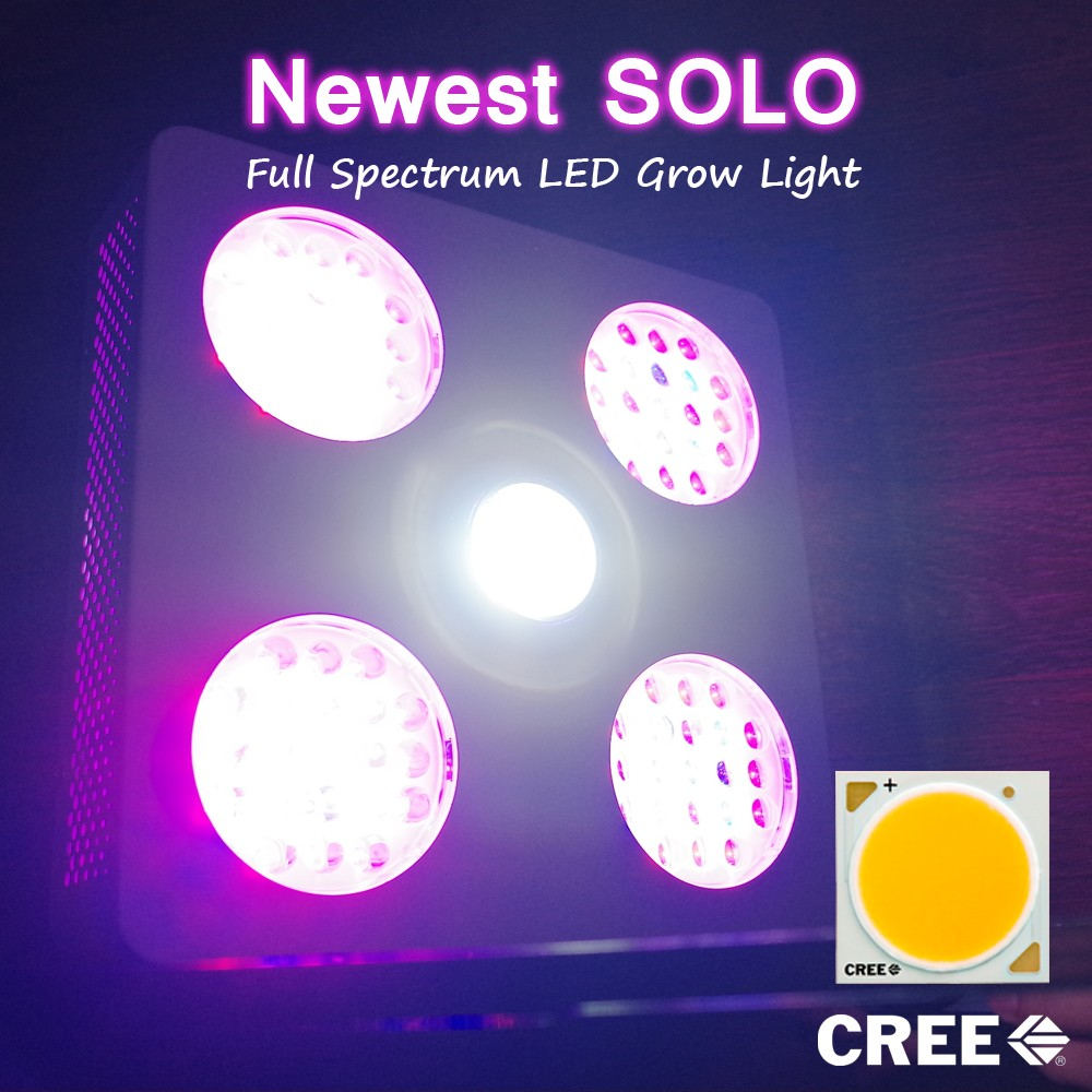 New solo led grow light 300w grow light led with CXB3070 cob