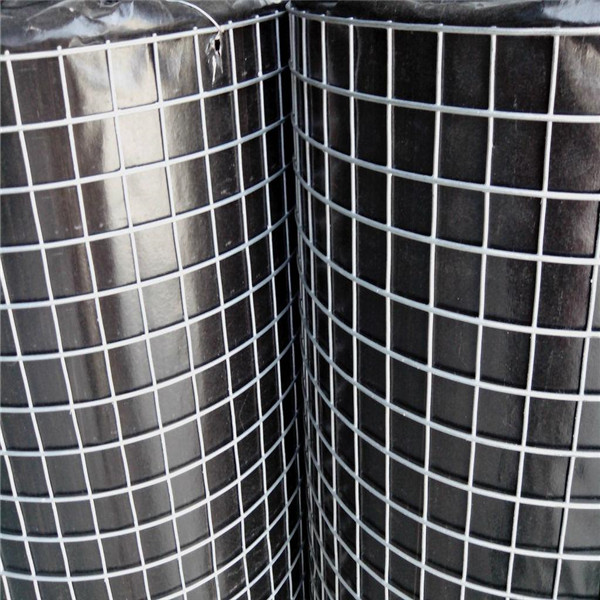 China Factory Pvc Coated Welded Wire Mesh Price Philippines Buy
