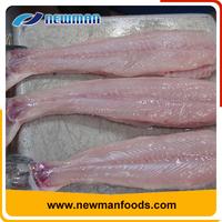 New arrival vacuum pack fresh skinless vietnam iqf frozen pangasius fish fillet price