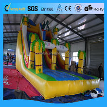 Customized classical 18ft inflatable water slides