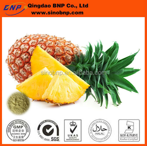 BNP Supply Best Quality Fresh Pineapple Extract powder
