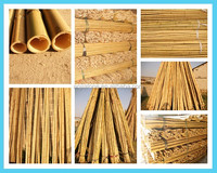 WY-CC 030 natural dry straight strong bamboo canes for agriculture manufactures china