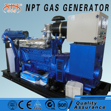 80-500kW biogas china generator price