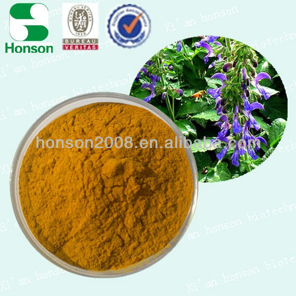 Qualified Natural Salvia extract10%, 50%, 80%,98% from manufacturer in China