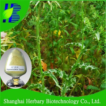 Pure natural modern herbal extract milk thistle seed extract/silymarin uv80%