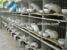 rabbit farming cage/used rabbit cages for sale