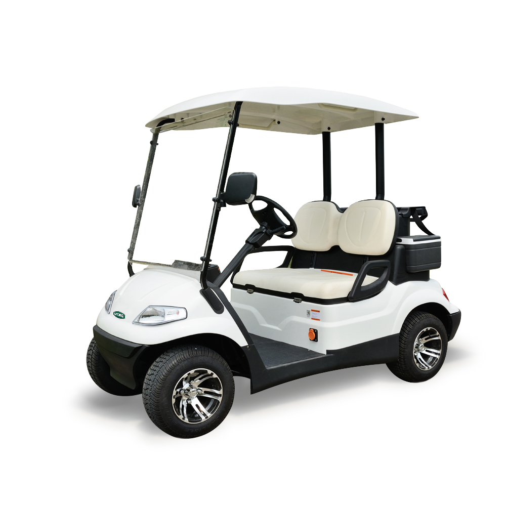 Hot Koop 2 persoon elektrische mini golfkar