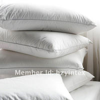 Money Back Guarantee Goose Down Surround Pillow