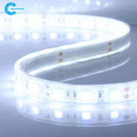 White light 12V voltage SMD 5050 led 60 leds Flexible LED light strip