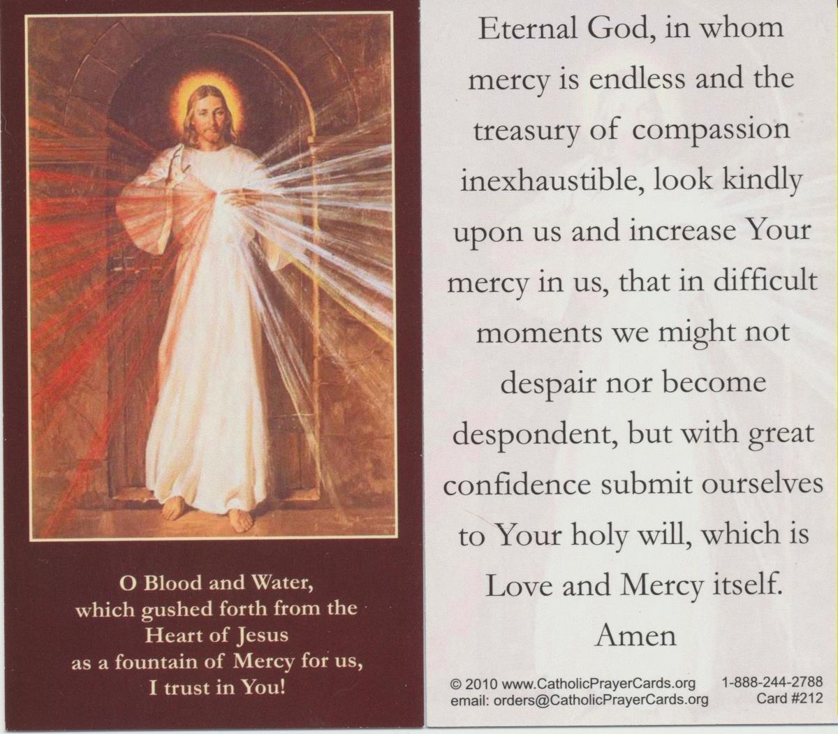 SPANISH DIVINE MERCY TRUST LAMINATED PRAYER CARDS 25//PKG