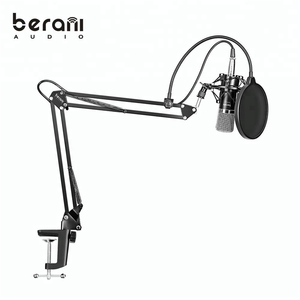 BAM-800 High quality microphone studio recording microphone for computer pc