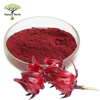 High Quality Ruselle Extract / Hibiscus Sabdariffa / Rose Eggplant Powder