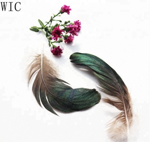 TOP Quality Fashionable Colorful Duck Feather for Wholesale
