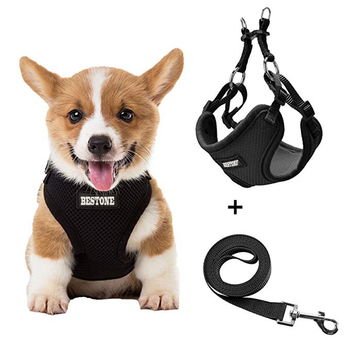 Comfortable Durable Adjustable Soft Mesh Step Small Dog Harness With Leash