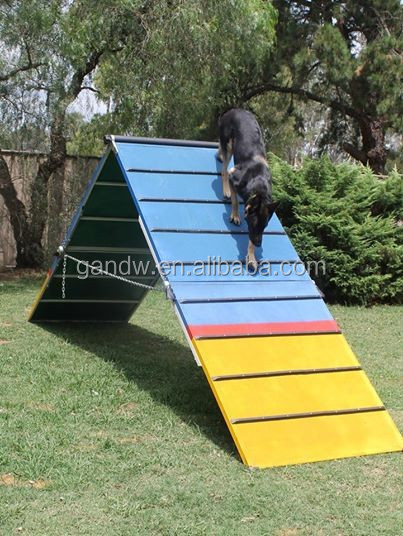 9ft Dog Agility A frame with 2 big ramps