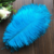 Manufacturers wholesale 35-40cm ostrich feather red green yellow blue white gray etc