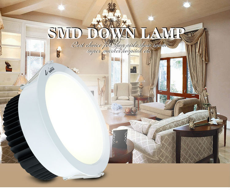 Leimove ceiling decoration adjustable led downlights white milky for wholesale-2