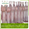 Halal Product Frozen meat lamb carcass