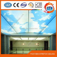 thousands of different sky printed pvc ceiling design for shops