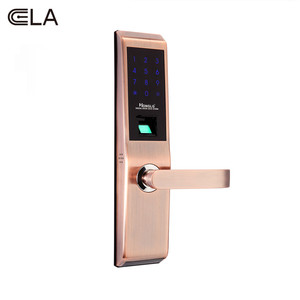 Biometric Fingerprint Lock with Password Mechanical Key Function