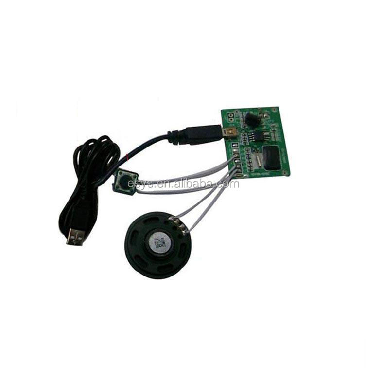 Light sensor sound module with USB port for toys