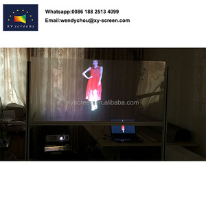 Holographic projection Guangzhou,Rear projection screen fabric,Window screen fabric