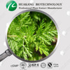 Natural plant artemisia annua extract /artemisinin cancer products