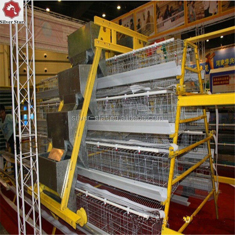 Design Layer Chicken Cages /Chicken Egg Layer Cages with Automatic Poultry Feeding