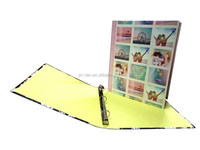 Unique paper file folder with printing & laminating