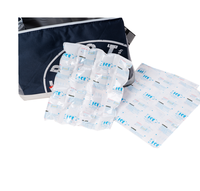 Guaranteed quality disposable ice pack for food storage