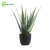 2019 Gardening Plastic Ornamental Pot Faux Aloe Mini Artificial Succulent Plant