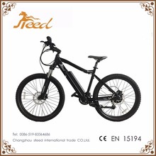 EN15194 easy rider low price electric bike dirt for sale