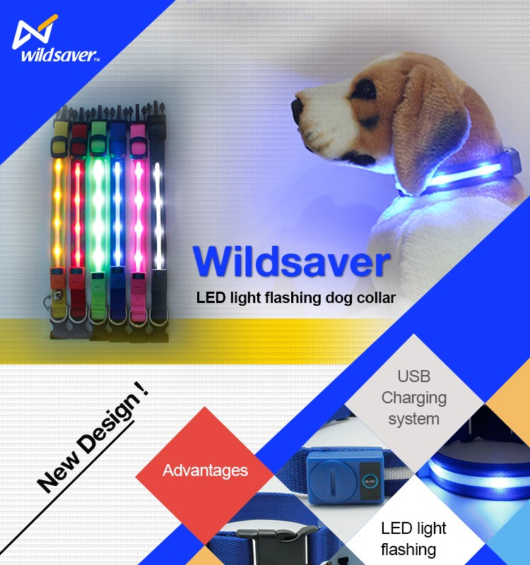 USB rechargeable dog collar Stocked LED dog puppy Collar & Leash Type pet Protective Collar