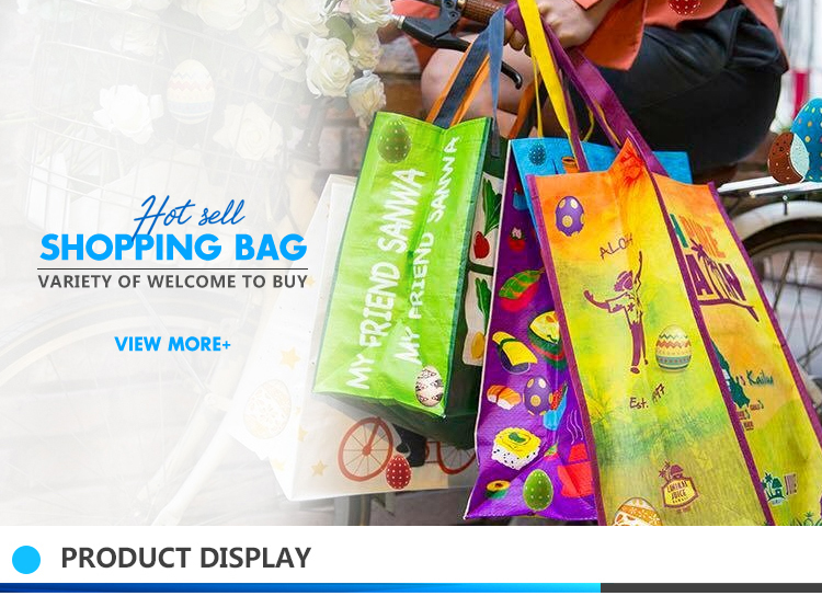 b080dd4c2bb Eco-friendly Pp Woven Lunch Bag,Customized Logo Printed Cooler Bag ...